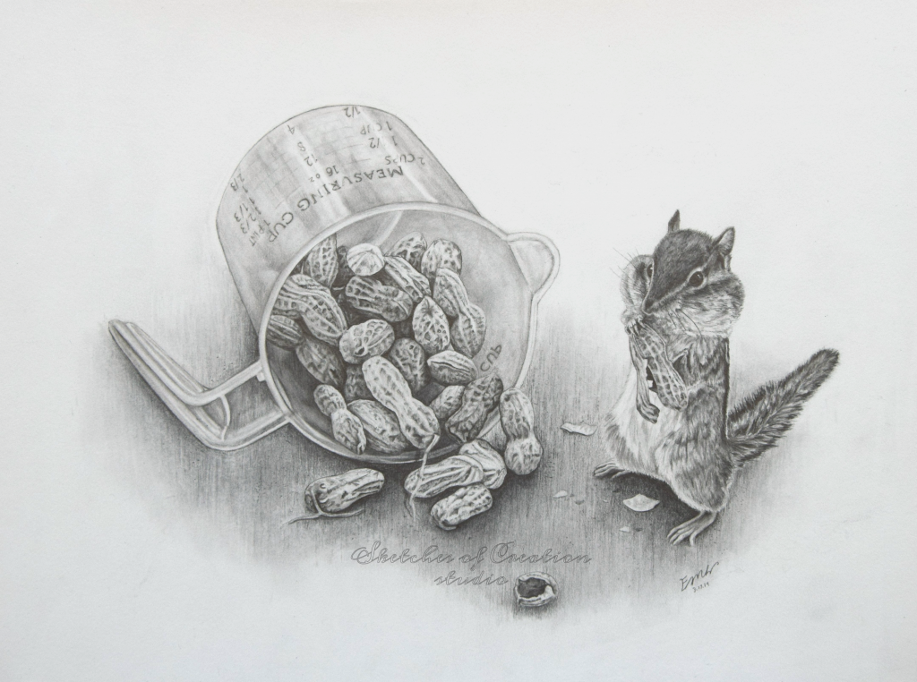 """""""Mischievous"""" a drawing of a chipmunk collecting peanuts. 9x12"""" Completed March 2019"""