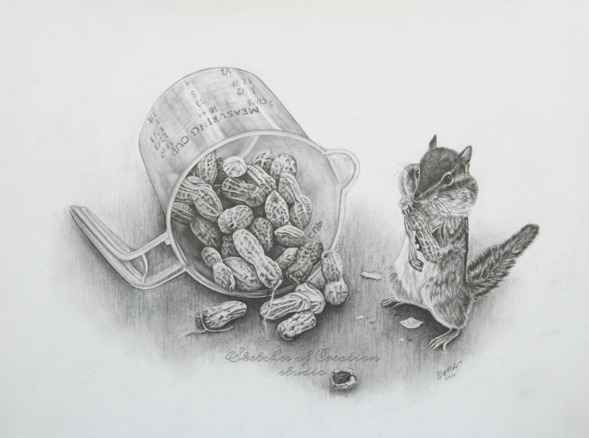 'Mischievous' a drawing of a chipmunk collecting peanuts. 9x12 inches. Completed March 2019