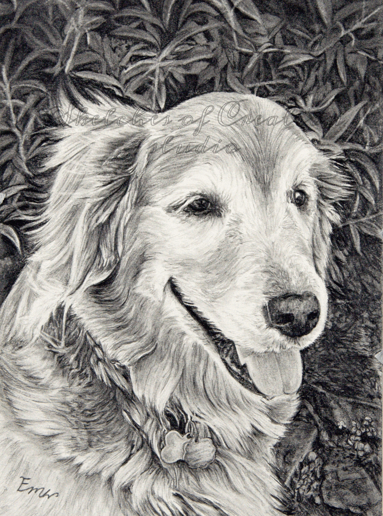 'Maya' a drawing of a golden retriever. 5x7 inches. Completed February 2020